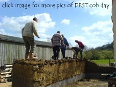 Treading mass cob at Devon Rural Skills Trust cob day at Hatherland Mill, taught by members of Jack in the Green